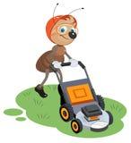 Ant gardener mows lawn. Gardener and lawn mower Stock Photo