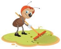 Ant Gardener with rake Royalty Free Stock Images