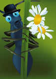 Ant in a hat and flowers fo Royalty Free Stock Photo