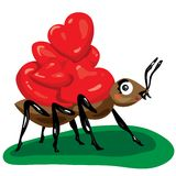Ant with hearts Royalty Free Stock Photography