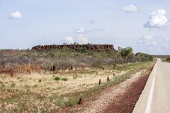 Ant Hills along the asphalt road in Australia Northern Territory royalty free stock image