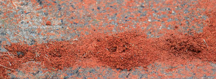 Ant Hills. Built up on the sidewalk Royalty Free Stock Photos