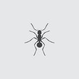 Ant Icon dans une conception plate dans la couleur noire Illustration EPS10 de vecteur Photo stock