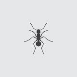 Ant Icon in a flat design in black color. Vector illustration eps10. Ant  Icon in a flat design in black color. Vector illustration eps10 Stock Photo