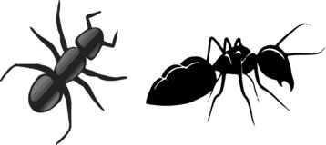 Ant icon on white background royalty free illustration