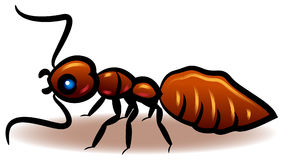 Ant. Illustrated ant clip art image on  white background Royalty Free Stock Images