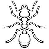 Ant Illustration Imagens de Stock