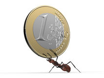 Ant is lifting a euro coin isolated on a white Stock Photos