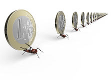 Ant is lifting a euro coin isolated on a white.  Stock Photography