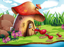Ant and mushroom. Illustration of many ants and a mushroom house Stock Illustration
