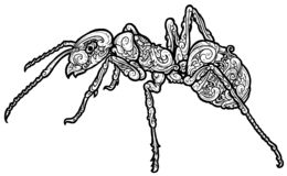 Beautiful ant ornament wezz royalty free illustration