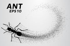 Ant of the particles. The ant consists of small circles. Vector illustration. Ant of the particles. The ant consists of small circles Stock Images
