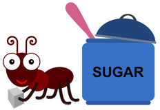 Ant's sugar Stock Photos