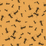 Ant Seamless Pattern. On Orange Background. Insect Texture royalty free illustration