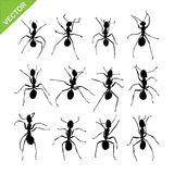 Ant silhouettes vector Royalty Free Stock Image