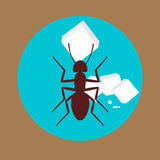Ant with Sugar Cubes. Vector Illustration Royalty Free Stock Image