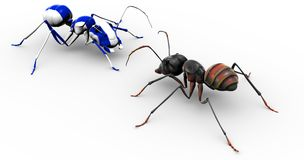 Ant Talking to Painted Blue Ant Stock Images