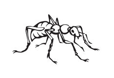 Ant. Vector drawing Stock Photography