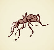 Ant. Vector drawing Royalty Free Stock Images