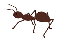 Ant Vector Illustration dans la conception plate de style Images libres de droits