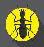 Ant Vector. Wild Creepy Ant Insect Vector Illustration Royalty Free Stock Photography
