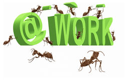 Ant at work busy doing the job occupied. Ant working being busy occupied work in progress 3D word with insects building it vector illustration