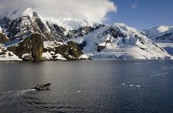 Ant3artida - isla de Danko en bahía del paraíso Imagenes de archivo