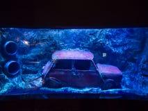 Antalya aquarium Stock Photo