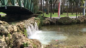 Antalya, Turkey - March 6, 2016: Small waterfall in the park on a sunny day in Antalya, Turkey. stock video