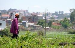 Antananarivo, Μαδαγασκάρη 24 ΝΟΕΜΒΡΊΟΥ 2016: Δραστηριότητα ανθρώπων μέσα Στοκ εικόνες με δικαίωμα ελεύθερης χρήσης