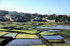 Antananarivo madagascar Arkivbilder