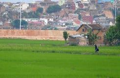 Antananarivo, madagascar 24 DE NOVEMBRO DE 2016: Trabalho dos povos no fotos de stock royalty free