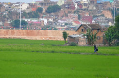 Antananarivo madagascar NOVEMBER 24TH 2016: Folkarbete på royaltyfria foton