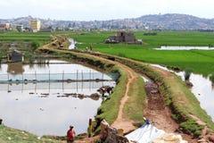 Antananarivo, Madagascar 24 NOVEMBRE 2016: Lavoro della gente sul Immagine Stock