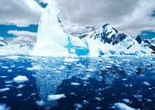Antarctic Royalty Free Stock Images