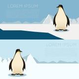 Antarctic banner2 Royalty Free Stock Photo