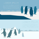 Antarctic banner3. Vector image of a banner with antarctica and penguins Stock Photography