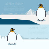 Antarctic banner1. Vector image of a banner with antarctica and penguins Stock Image