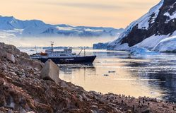 Antarctic cruise ship among icebergs and Gentoo penguins gathered on the rocky shore of Neco bay, Antarctica royalty free stock photos