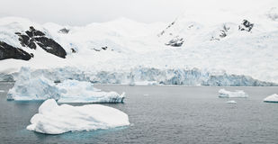 Antarctic Glacier Royalty Free Stock Photo