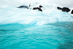 Antarctic glacier flowing into ocean Stock Photography