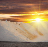 Antarctic ice island Stock Photos