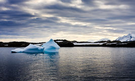 Antarctic iceberg Stock Images