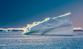 Antarctic iceberg. In the snow royalty free stock images