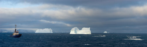 Antarctic icebergs. Antarctic ocean many white icebergs Royalty Free Stock Photo