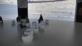 Antarctic museum stock video