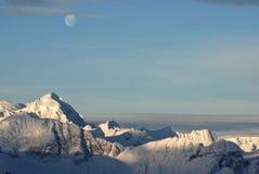 Antarctic Peninsula summer sunny day. Stock Images