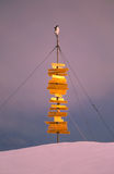 antarctic pingwinu znak Obrazy Royalty Free