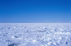 Antarctic Sea Ice. Sea ice in the Southern Ocean off the coast of Antarctica royalty free stock images