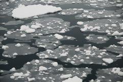 Antarctic sea ice. Brash ice/pack ice covering the ocean surface at Neko Harbor stock photos